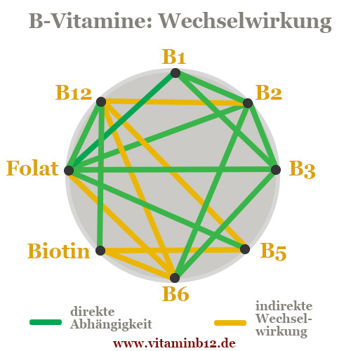 b vitamine interaktion wechselwirkungen