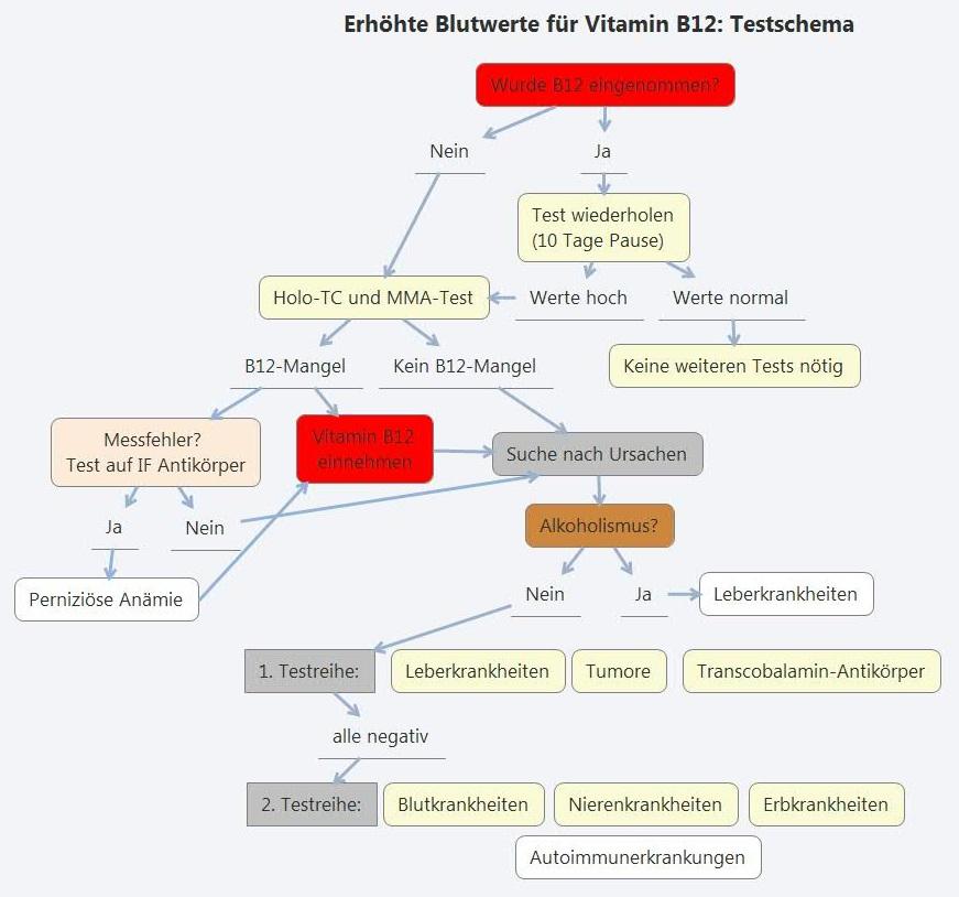 Vitamin b12 Hohe Blutwerte