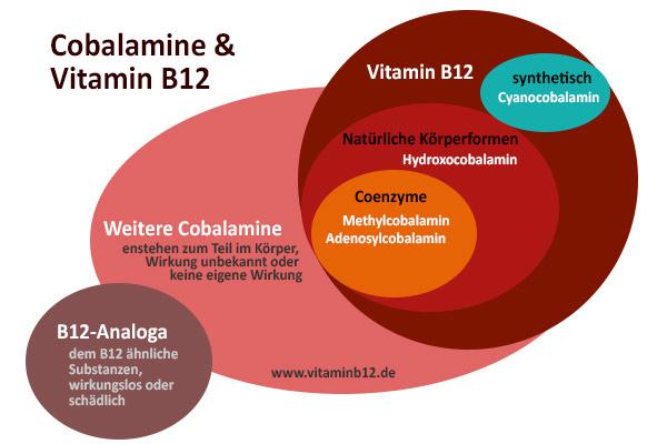 cobalamine-vitamin-b12