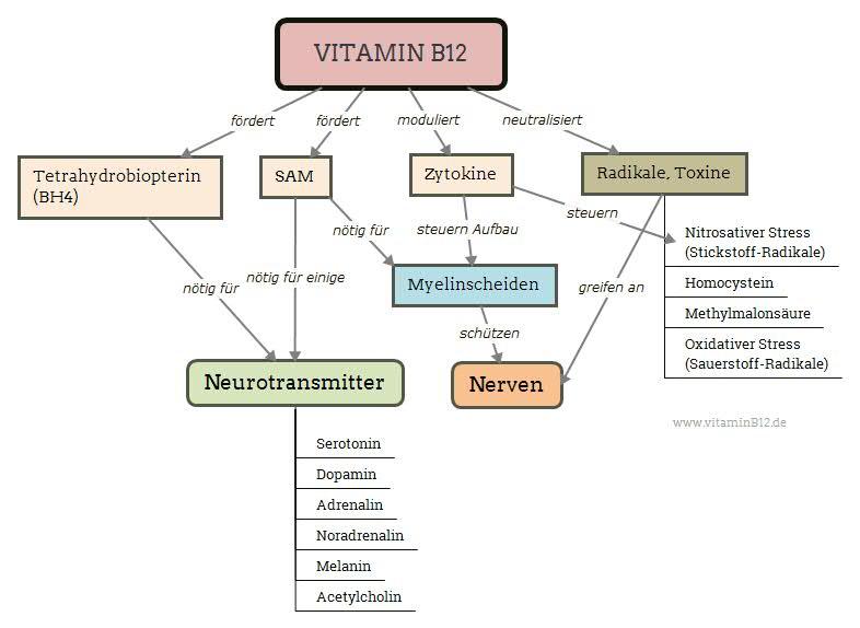 Vitamin B12 und Psyche